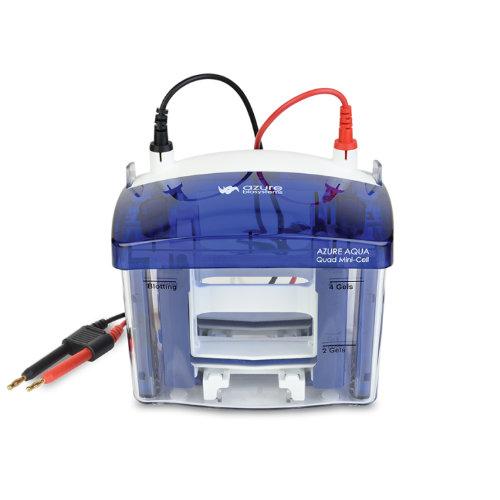Azure Aqua Quad Mini Cell