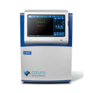 Western Blotting Imaging System